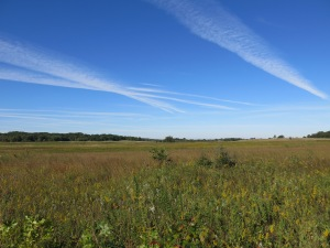 Geoengineering the Scuppernong