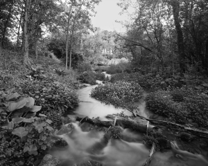 45BW56-1 Scuppernong Creek