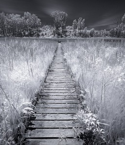 kristen-westlake-20140605-boardwalk-infrared-landscape-0001