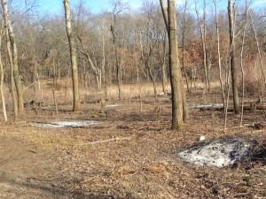 ash remains