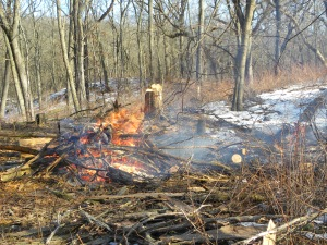 burning pile