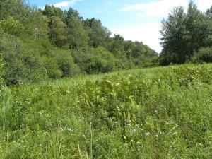 prairie southeast view 07:14